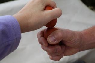 EggCracking2